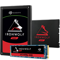 Seagate IronWolf 110 SATA SSD product image
